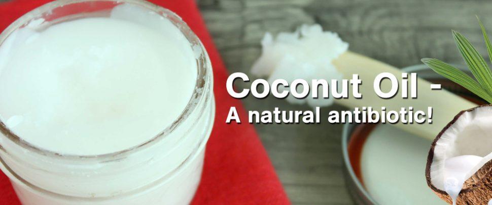 Coconut oil natural antibiotic